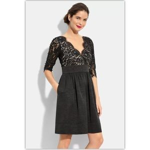 Eliza J Lace Fit and Flare Dress 6 Petite